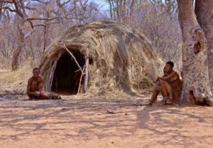 San People Under a Mangetti Tree